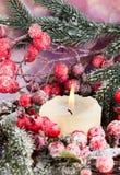 Венок рождества от красных ягод, мех-дерева и конусов Стоковые Изображения