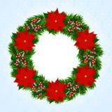 Венок рождества с poinsettia Стоковые Изображения