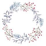 Венок рождества флористический иллюстрация штока