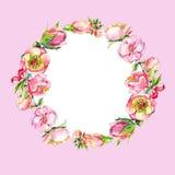 Венок розовых цветков акварели Стоковое Фото