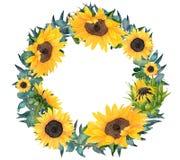 Венок солнцецвета акварели покрашенный рукой Стоковые Изображения