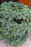венок сосенки рождества Стоковые Изображения RF
