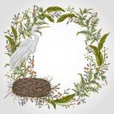 Венок с птицей цапли, гнездом и заводами болота Флора и фауна болота иллюстрация вектора