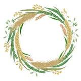 Венок с хлопьями Ячмень, пшеница, рожь, рис, пшено и овес Элементы флористического дизайна собрания декоративные иллюстрация штока