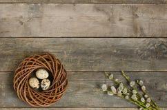 Венок с 3 яичками триперсток Стоковые Изображения
