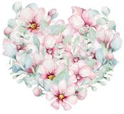 Венок цветков вишни пинка цветения в стиле акварели с белой предпосылкой Установите японца Сакуры лета зацветая бесплатная иллюстрация