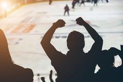 Вентиляторы на спичке хоккея стоковое изображение