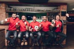 Вентиляторы спорт сидя в пиве линии празднуя и веселя выпивая на баре спорт стоковые изображения