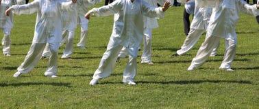 Вентиляторы хиа Tai боевых искусств с белым silk платьем во время co Стоковая Фотография RF