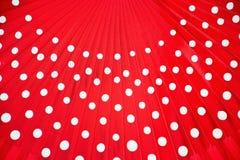 Вентилятор фламенко Стоковые Изображения RF