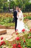венчание встречи фото пар романтичное стоковое изображение