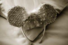 венчание вуали стоковая фотография