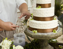 венчание вырезывания торта Стоковые Фото