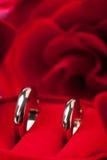 венчание золотистых кец розовое Стоковые Фото