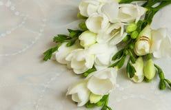 венчание карточки Стоковая Фотография RF