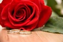 венчание кец розовое Стоковые Изображения RF