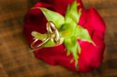 венчание кец розовое Стоковая Фотография