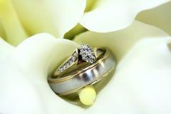 венчание кольца лилии цветка Стоковые Фотографии RF