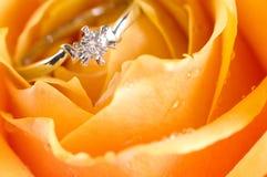 венчание кольца розовое Стоковые Фотографии RF