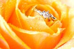 венчание кольца розовое Стоковое Изображение RF