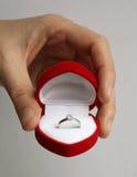 венчание кольца Стоковая Фотография RF