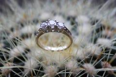 венчание кольца diamont Стоковое Изображение