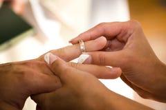 венчание кольца grooms Стоковые Изображения