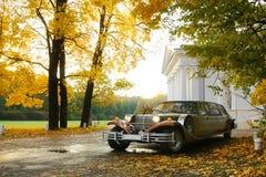 венчание лимузина Стоковое Изображение RF