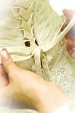 венчание платья корсета Стоковые Изображения