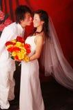 венчание портрета Стоковые Изображения RF