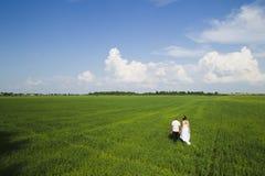 венчание прогулки Стоковое Изображение