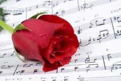 венчание рояля нот розовое Стоковые Фотографии RF