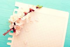 венчание сети шаблона страницы приветствию карточки предпосылки всеобщее Цветя ветвь вишни и Стоковые Изображения RF