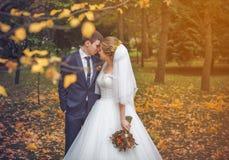 Венчание сняло невесты и groom в парке стоковое изображение rf