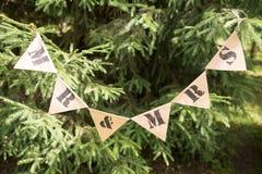 венчание тесемки приглашения цветка элегантности детали украшения предпосылки Стоковое Изображение RF