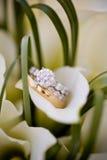 венчание ювелирных изделий Стоковые Фотографии RF