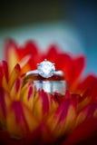 венчание ювелирных изделий Стоковое фото RF