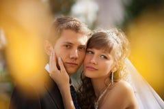 Венчание стоковые фотографии rf