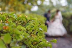 венчание groom церков церемонии невесты стоковые фотографии rf