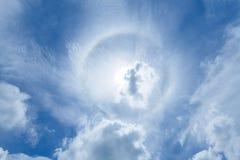 Венчик Солнця Стоковое фото RF