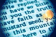 Вера как горчичное зерно Стоковая Фотография