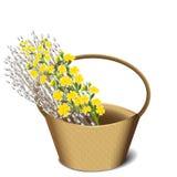 Верба и цветки в корзине Стоковое фото RF
