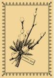 верба сбора винограда открытки bouqet иллюстрация вектора