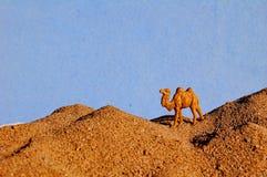 Верблюд в миниатюре пустыни стоковая фотография