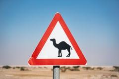 Верблюд подписывает внутри пустыню Израиля пустая дорога стоковая фотография