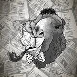 Верблюд винтажного битника карточки животный с трубой Стоковая Фотография RF