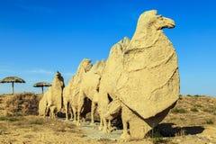 Верблюд в пустыне Стоковые Фото