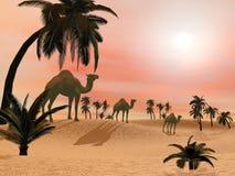 Верблюды в пустыне - 3D представляют Стоковые Изображения