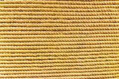 Веревочка белья Брайна Стоковое Изображение RF