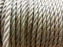 Веревочка Брайна Стоковое Изображение RF